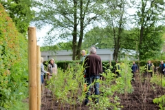 Baumpflanzaktion-Bönningstedt-Citizens-Forests-8