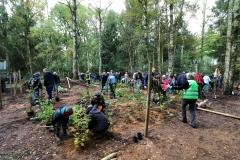 Einheitsbuddeln-Citizens-Forests