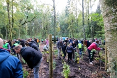 Einheitsbuddeln-in-Bönningstedt-Citizens-Forests