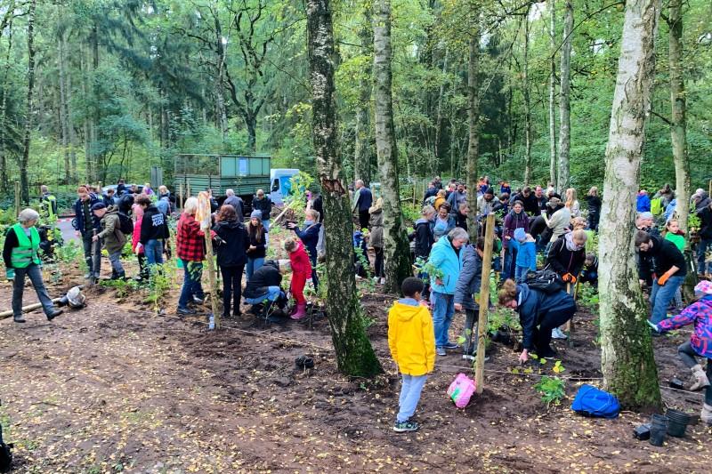Baumpflanzaktion zum Einheitsbuddeln Citizens Forests