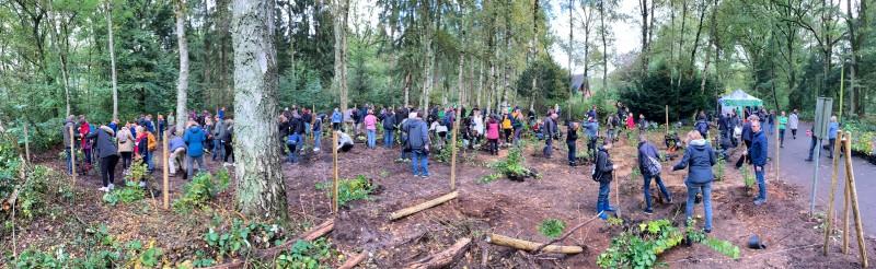 Pflanzaktion zum Einheitsbuddeln Citizens Forests