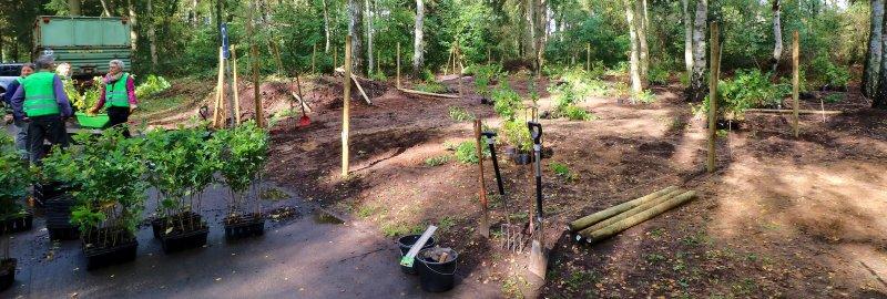 Sachspende Baum Setzling Zaun