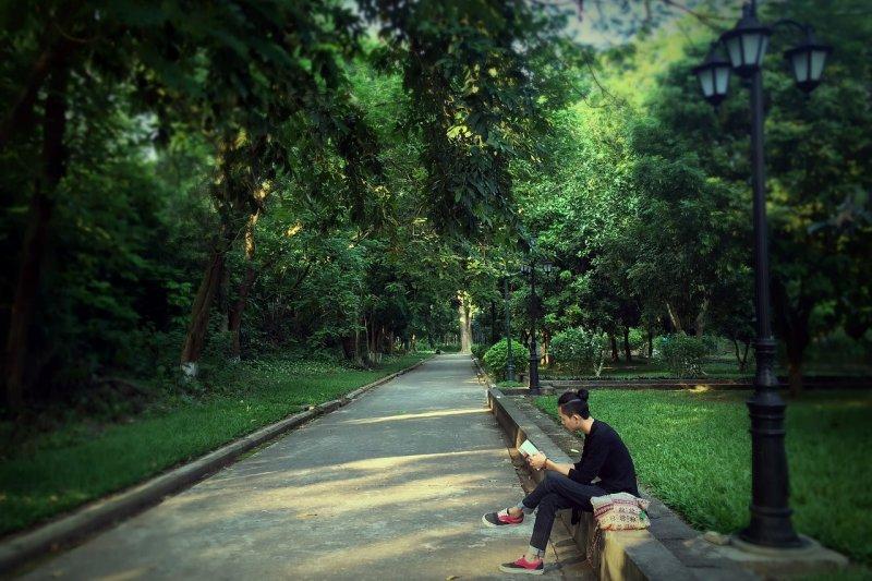 Literatur Miyawaki Aufforsten