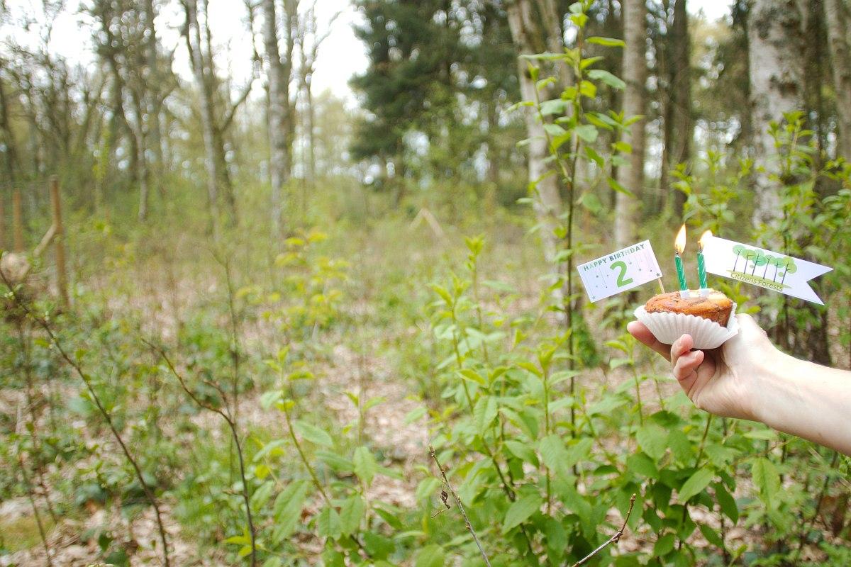 2. Geburtstag Citizens Forests