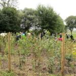 Einheitsbuddeln 2021 Citizens Forests Pflanzaktion