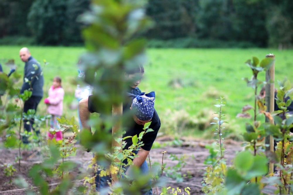 Einheitsbuddeln-2021-Citizens-Forests-Pflanzaktion-Miyawaki
