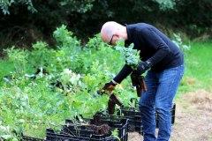 Einheitsbuddeln-2021-Citizens-Forests-Pflanzen-sortieren