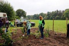 2020-Einheitsbuddeln-Citizens-Forests-Aufforstungsflaeche