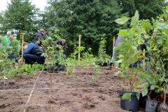 2020-Einheitsbuddeln-Citizens-Forests-Baeume