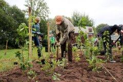 2020-Einheitsbuddeln-Citizens-Forests-Miyawaki