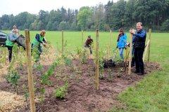 2020-Einheitsbuddeln-Citizens-Forests-Wildschutzzaun