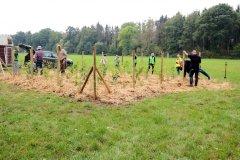 2020-Einheitsbuddeln-Citizens-Forests-fertig-aufgeforstet