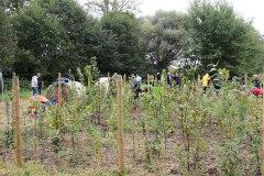 Einheitsbuddeln-2021-Citizens-Forests-Aufforstung