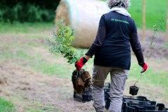 Einheitsbuddeln-2021-Citizens-Forests-Pflanzaktion-vorbereiten